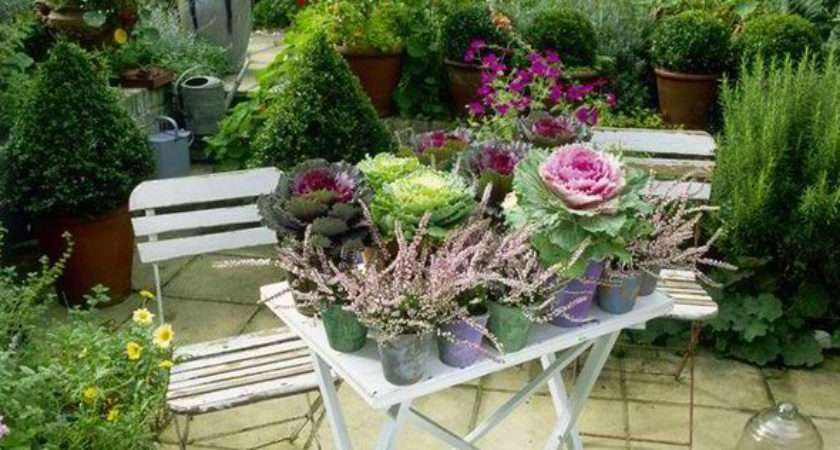 Alan Titchmarsh Tips Growing Ornamental Vegetables