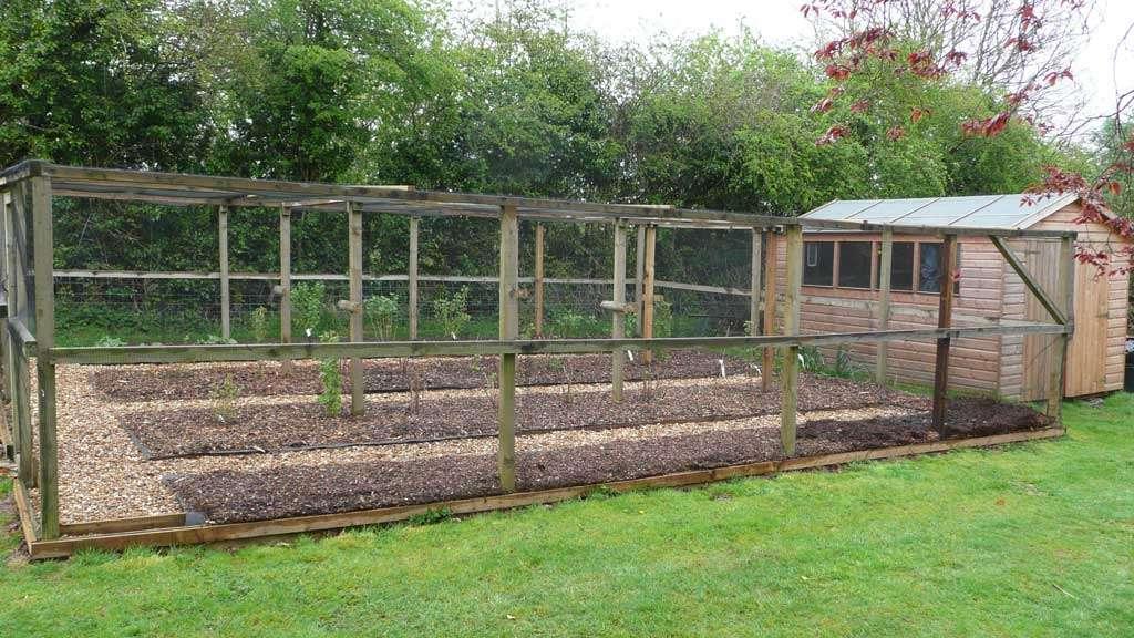Allotment Rogerstone Gardens Cardiff Garden Design Wales