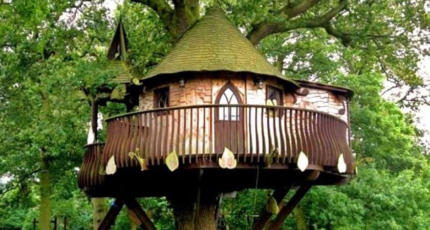 Amusement Parks News Cool Tree House Ideas Headrush