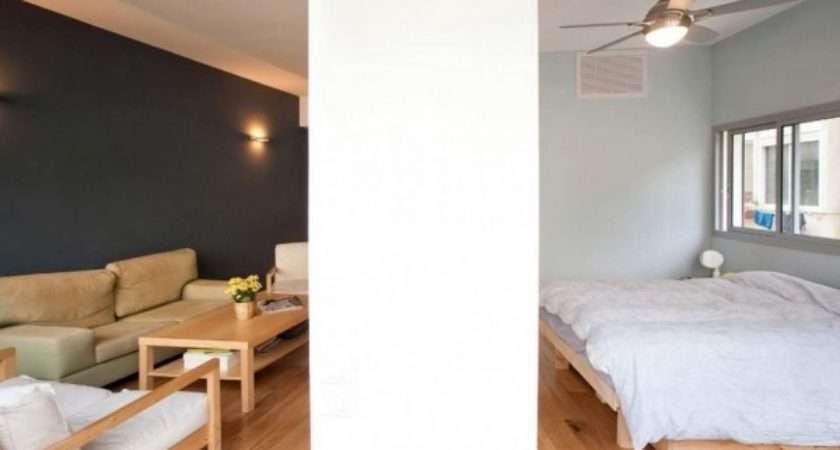Apartment Small Condo Renovation Ideas Two Bedroom