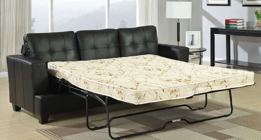 Astonishing Pull Out Sofa Bed Small Space Atzine