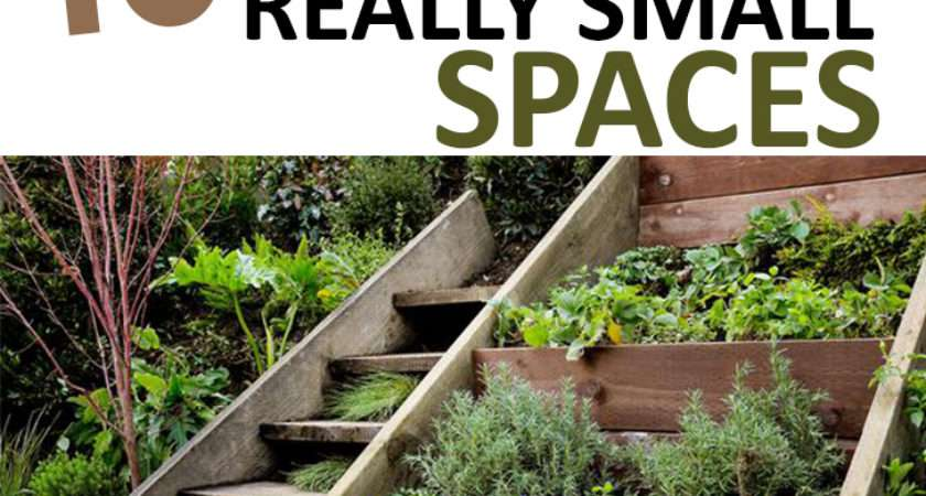 Awesome Gardens Really Small Spaces