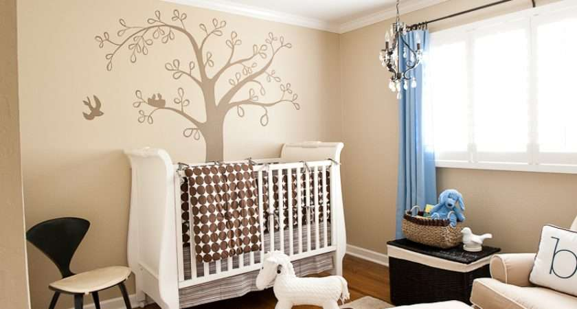 Baby Boy Bird Theme Nursery Design Decorating Ideas