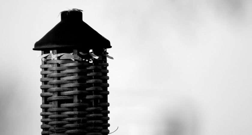 Bamboo Black White Clasixart Deviantart