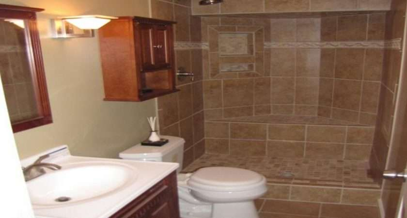 Basement Bathroom Ideas Unfinished Tips Invado