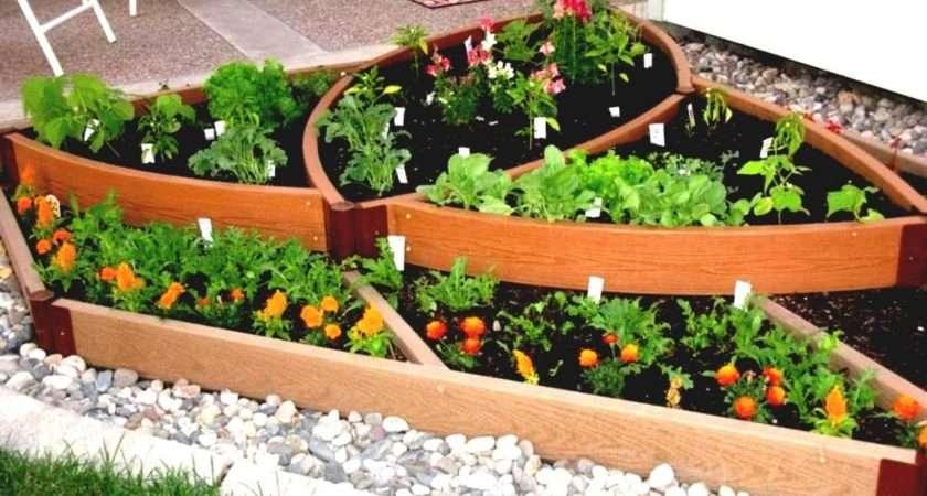 Basic Vegetable Garden Simple Diy Wooden Fence Ideas Idea