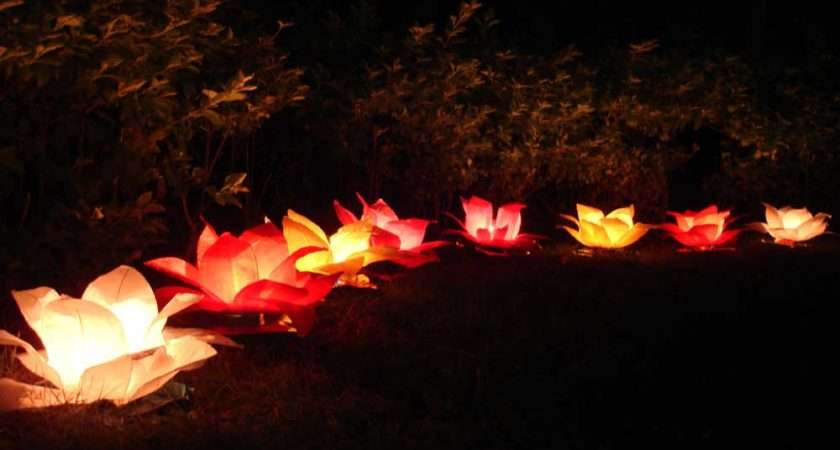Beautiful Paper Lotus Lanterns Tealight Candle Burns Hours