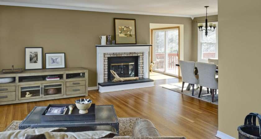 Before Benjamin Moore Artisan Living Room