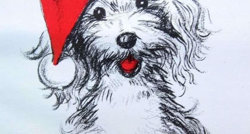 Best Christmas Vintage Dogs Pinterest