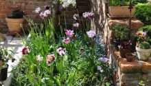 Best Corner Lot Landscaping Ideas Pinterest