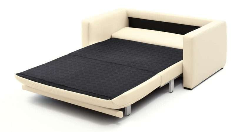 Best Ideas Pull Out Queen Bed Sofas