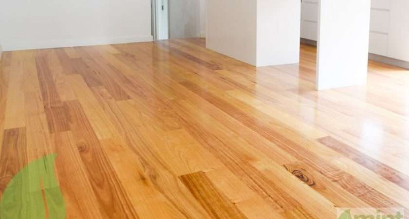 Best Solid Beech Flooring Lauzon