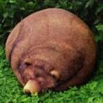 Big Sleeping Grizzly Bear Bean Bag Hiconsumption