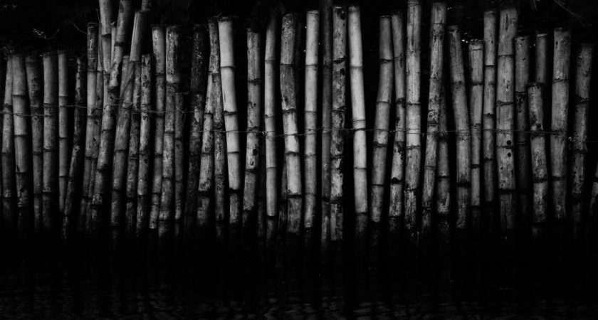 Black White Bamboo Tagnotalloweddmca