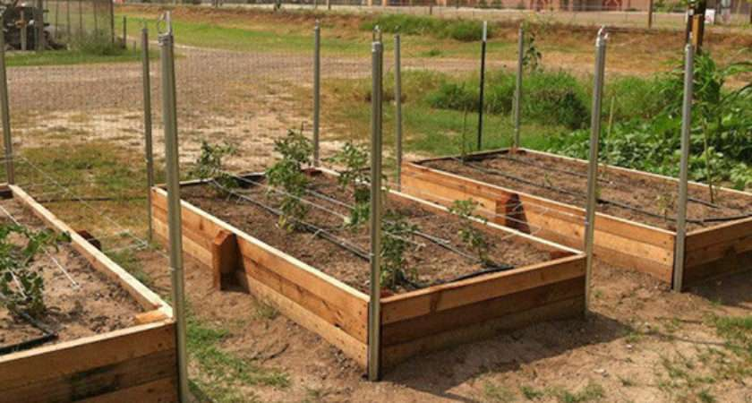Build Raised Garden Bed Video
