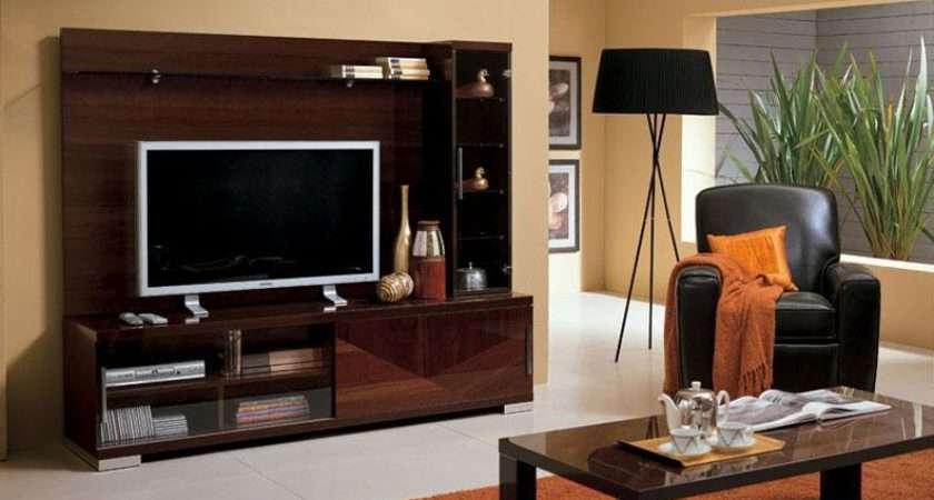 Cabinet Designs Living Room