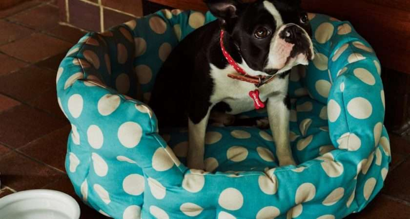 Cath Kidston Big Spot Dog Bed Medium Pets