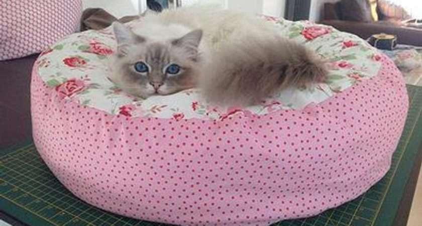 Cath Kidston Rosali Hand Made Custom Pet Bed Cat Dog