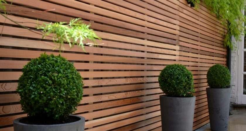 Cedar Timber Batten Cladding Trellis Privacy Screen