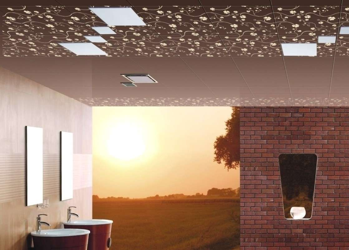 Ceilings Brick Walls Bathroom Design House