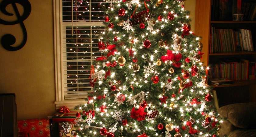 Christmas Celebration All