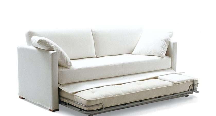 Clik Contemporary Sofa Bed Beds Furniture