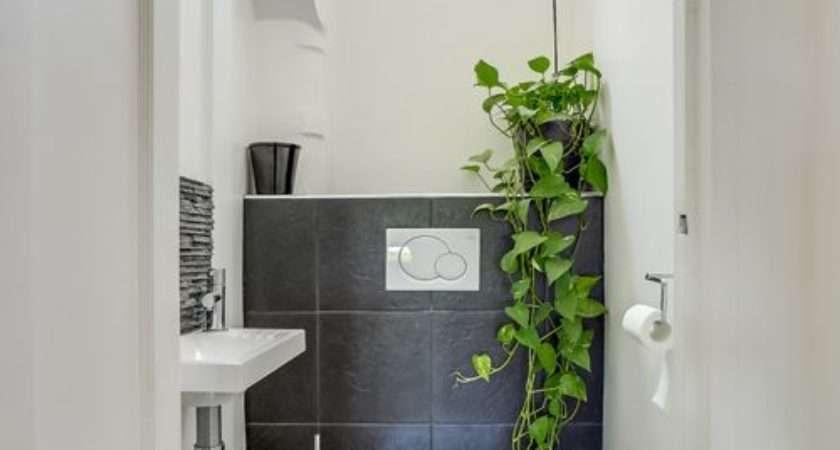 Cloakroom Design Ideas Renovations Photos Black Tiles