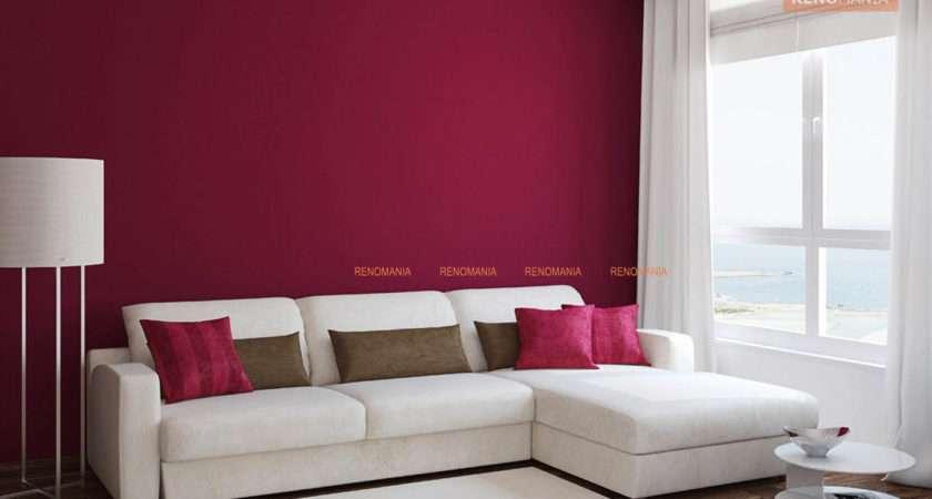 Color Combination Living Room Allstateloghomes