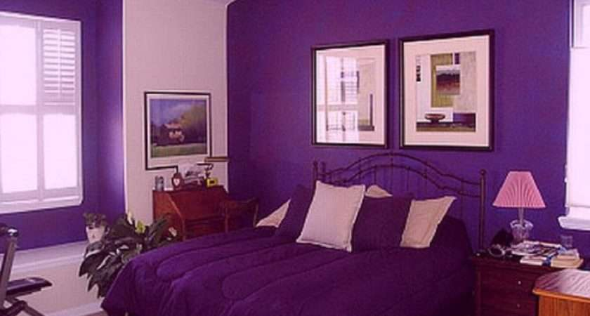Color Combination Purple House Colour Interior