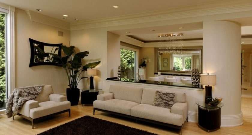 Colour Scheme Ideas Lounge Better Interior Design