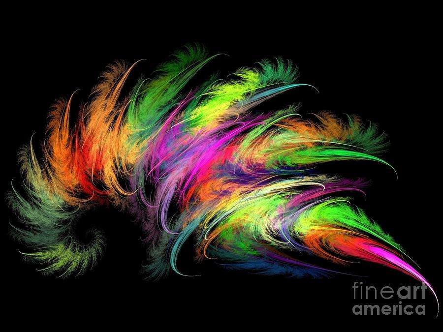 Colourful Feather Digital Art