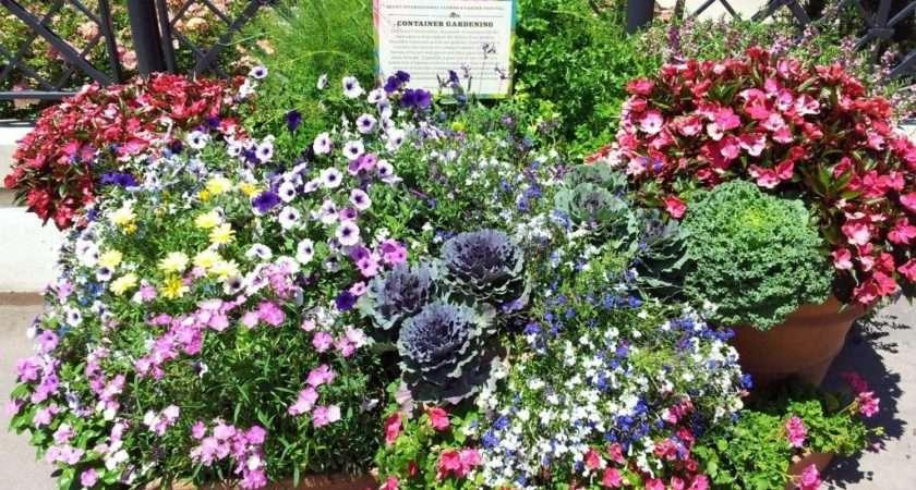 Container Garden Ideas Inspired Epcot Center Mom