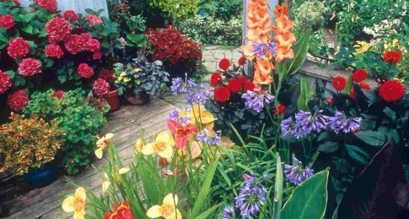 Container Gardening Propose Ideas