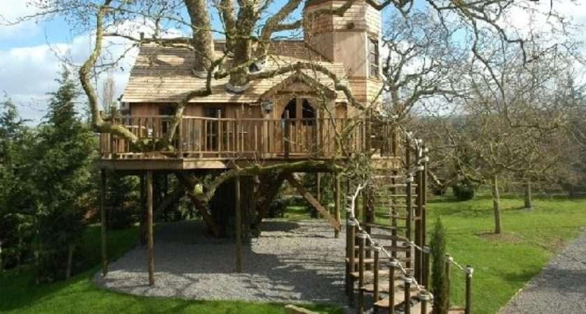 Cool Spotting Tree Houses Big Kids Luxury Spot