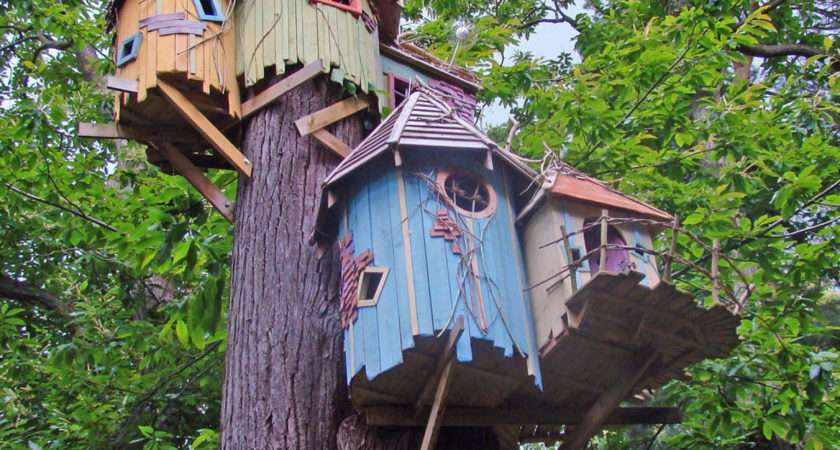 Cool Treehouse Designs Wish Had Our Backyard Photos