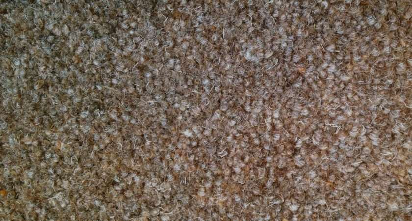 Cormar Carpets Town Country Peppercorn Twist