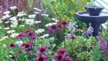Cottage Style Landscapes Gardens Diy