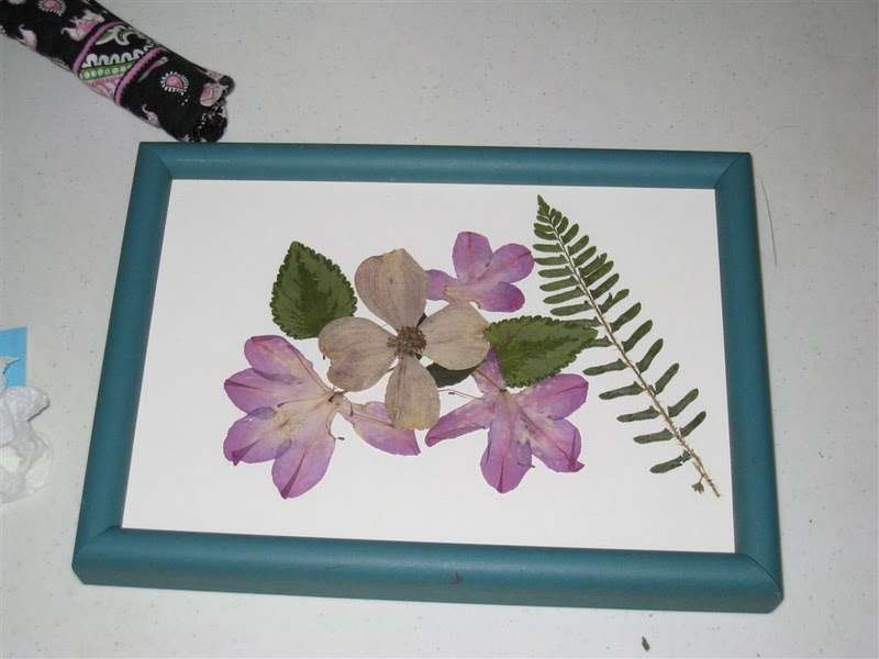 Creating Pressed Flower Frame Under Monkeysee