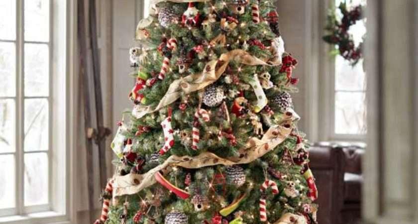 Creative Beautiful Christmas Tree Decorating Ideas