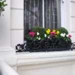 Custom Made Window Box Planter Buxus Balls Blooms