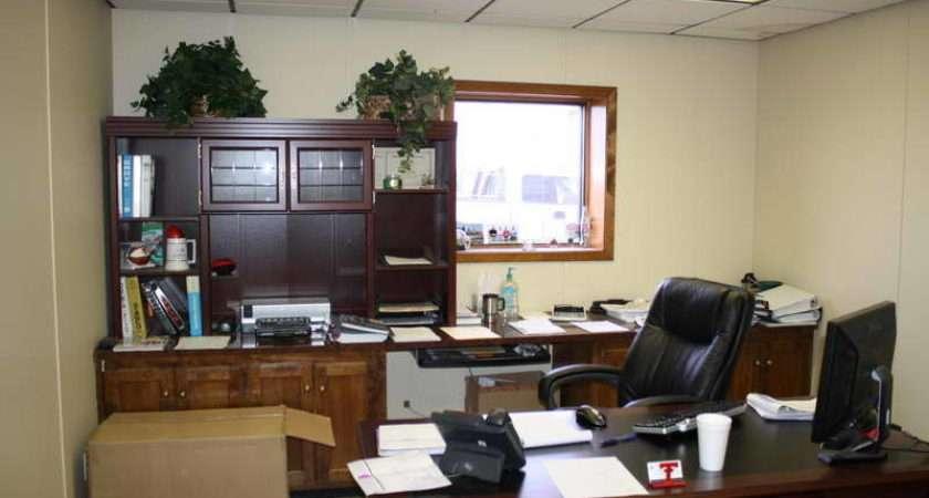 Decorating Office Work Plant Vines