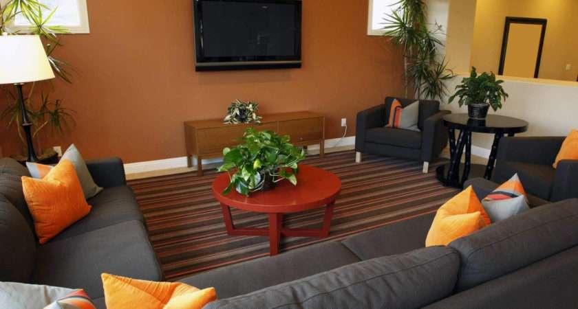Decorating Small Sitting Area Bestsciaticatreatments