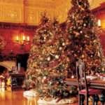 Decorations Decor Luxury Christmas Tree Ideas