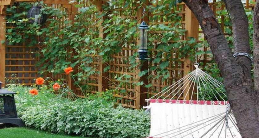 Decorative Garden Trellis Ideas