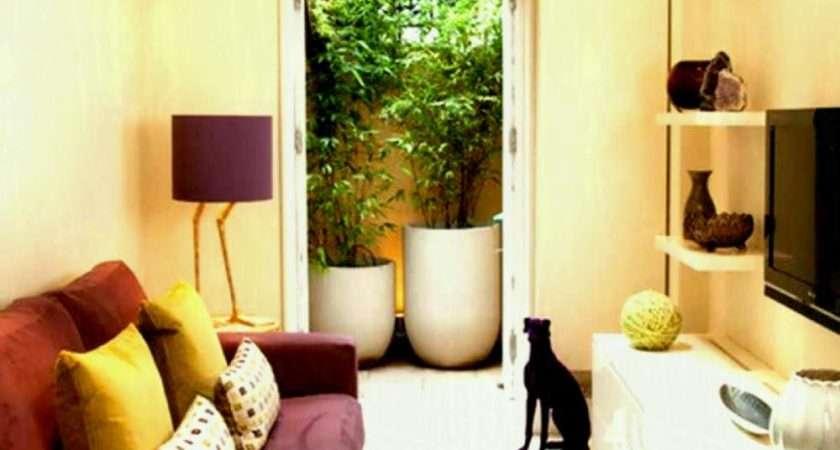 Designs Small Living Rooms New Room Interior Design