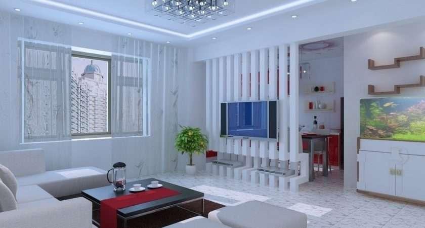 Divider Design Small Living Room
