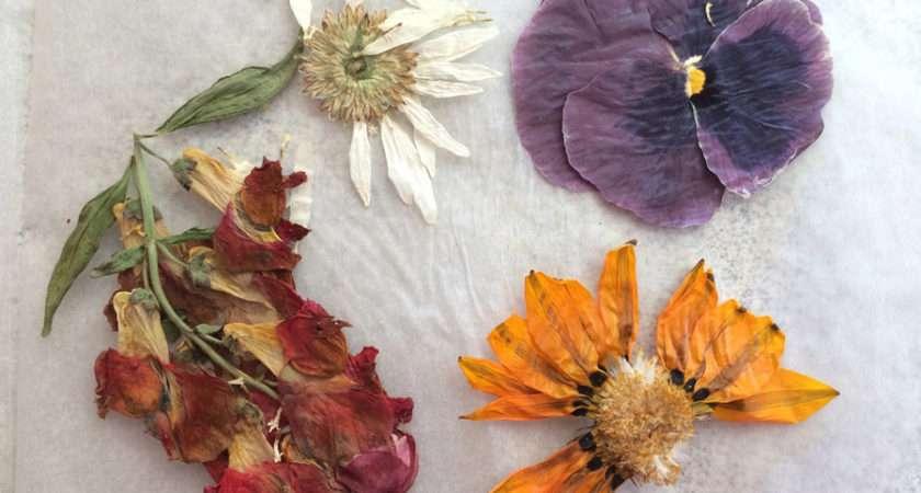 Diy Book Flower Press Craft Garden