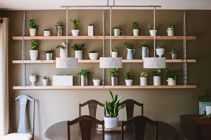 Diy Hanging Plant Shelves Flowers Plants Gardens Pinterest