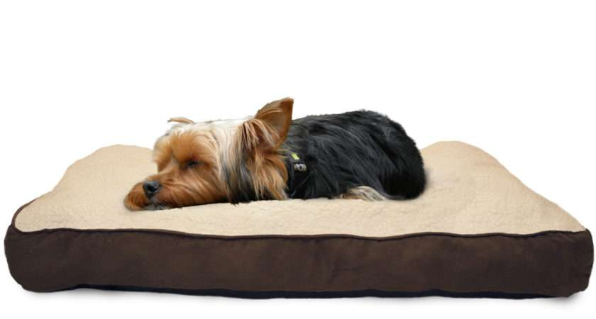 Dog Beds Pvc Frame Latimer Rose Bed Cath Kidston