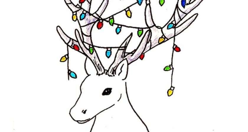 Drawn Robin Christmas Card Pencil Color
